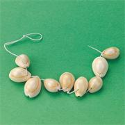 Shell Beads  (bag of 50)
