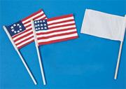 Color-Me� Blank Flags and Dowels  (pack of 12)