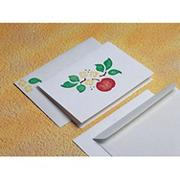 Allen Diagnostic Module Greeting Cards  (pack of 12)