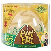 Anthill with coupon for live ants