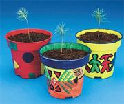 EduCraft Scholastic Pine Tree Planters Craft Kit 