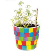Herb Garden Craft Kit  (makes 48)