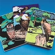 Color-Me Birds of Prey Craft Kit (makes 12)
