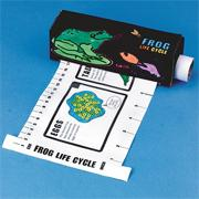 Frog Life Cycle Measure &#039;N Learn Craft Kit (makes 12)