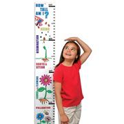 Color-Me Butterfly Life Cycle Jumbo Learn &#039;N Grow Craft Kit (makes 12)