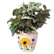 Color-Me Flower Pot Cover Craft Kit  (makes 12)