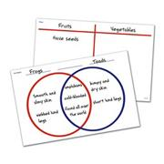 Venn Diagram/T-Chart (set of 30)