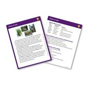 Reading Fluency Card Set, Grade 6