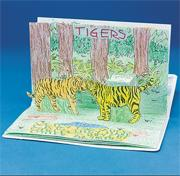 Zoo Animals Pop-Up Book (pack of 6)