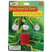 How Insects See (set of 6)