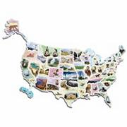 WonderFoam USA Photo Map Floor Puzzle