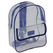 Clear Acrylic Backpack