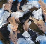 Natural Feathers, 14g  (bag of 150)