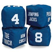 Fitness Dice  (pair)