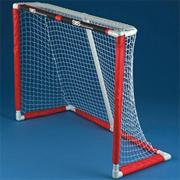 Spectrum Pro Hockey Goal