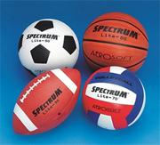 Spectrum� Lite Series Sport Ball Easy Pack