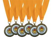 Trophy Cup Award Medals with Neck Ribbons  (pack of 6)