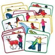 Animal Action Cards (pack of 16)