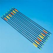 Fiberglass Target Arrows (set of 12)